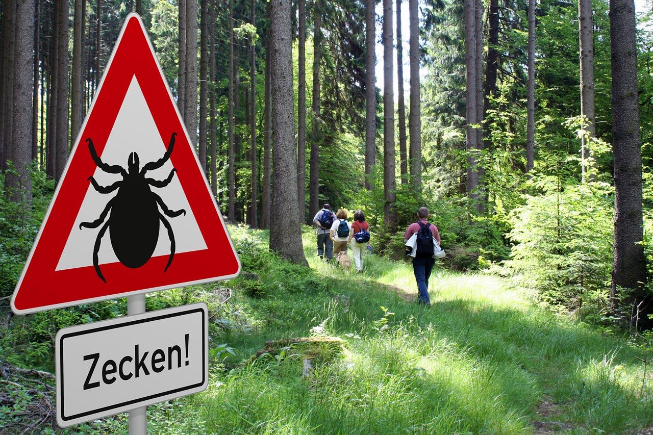 Achtung-Zecken-206268037